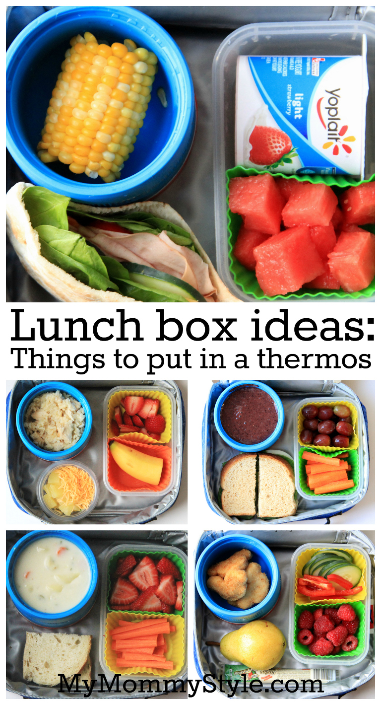 things to put in a thermos, thermos, how to pick out a thermos, what is the best thermos, lunch box ideas, school lunch