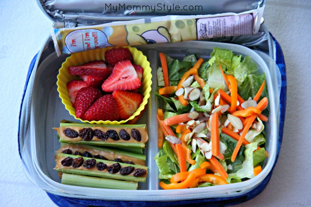 25 Healthy Lunch box ideas - My Mommy Style