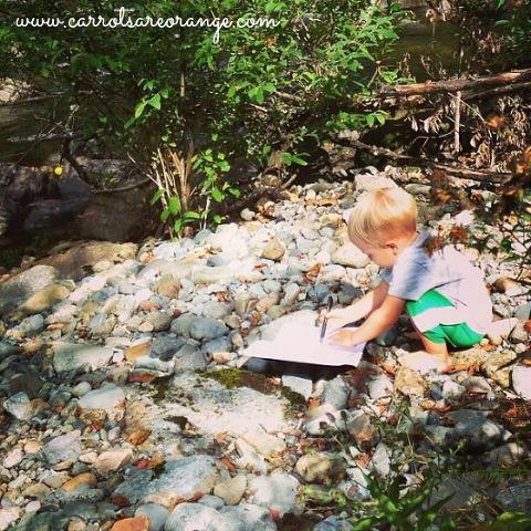 rocks round up journal
