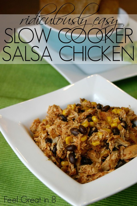 49 mexican recipes Salsa-Chicken