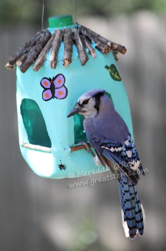 Recycled art projects of milk jug bird feeder.