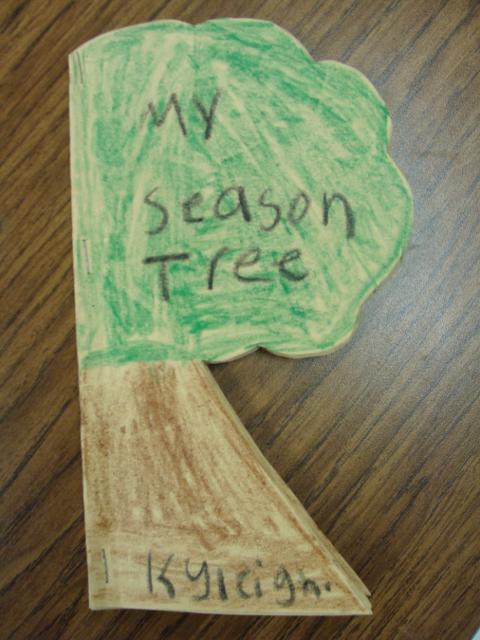 My Season Tree