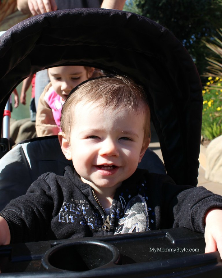 babies at sea world, Sea World, Things to do at Sea World, Activities, California, family time