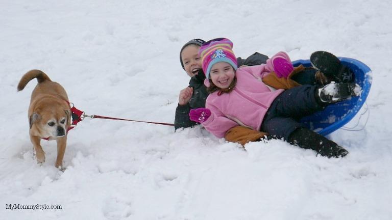 sledding gun, mymommystyle, sledding with a dog, lumix