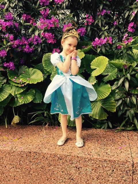 princess cinderella,walt disney world