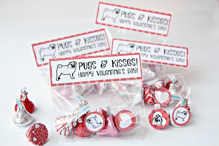 Happy valentine's day pug