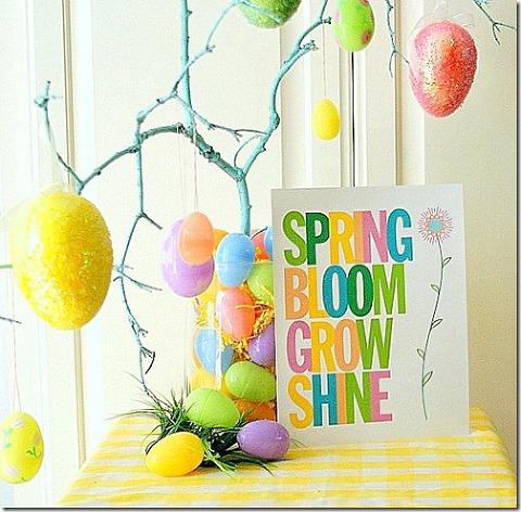 Spring bloom grow shine