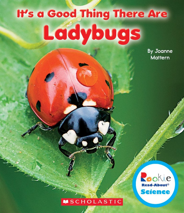 It's A Good Thing There Are Ladybugs book