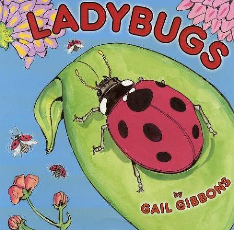 ladybugs book