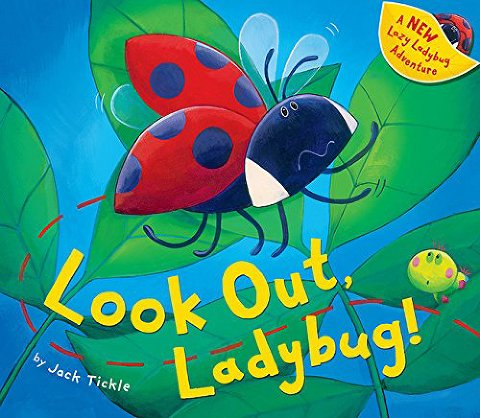 look out ladybug book