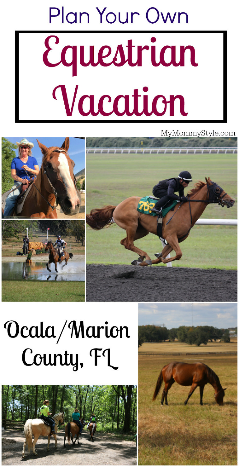 Ocala/marion county, equestrian vacation, horse lover