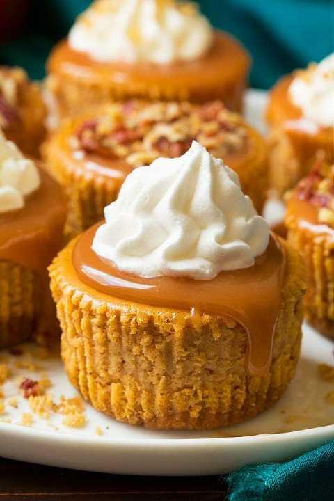 Pumpkin cheesecake cupcakes with salted caramel sauce