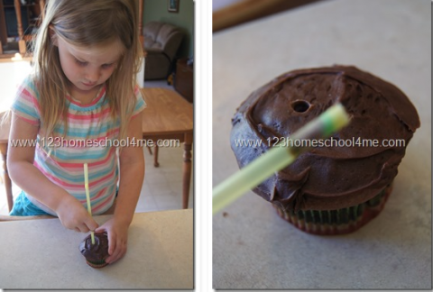 Chocolate cupcakes with a straw